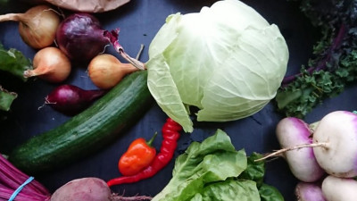Sensommarens grönsakskasse