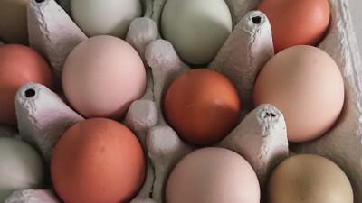 Ägg, 10-pack